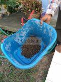 Uso ricaricabile alimentato solare della lampada di controllo dei parassiti di inquinamento liberamente nel frutteto dell'azienda agricola