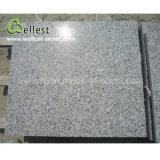 자연적인 돌 Polished 표면 G383 분홍색 진주 꽃 화강암 마루 도와