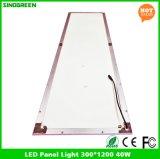 특색지어진 제품 LED 위원회 빛 세륨 RoHS 300*1200 40W