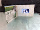 """Qualität 3.5 """", 4.3 """", Zoll 5 """", 7 """" LCD-fördernde Videokarte"""
