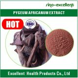 2016 het Hete 10:1 van het Uittreksel van Pygeum Africanum van de Verkoop