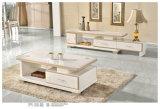 Carrinho moderno da tevê, mesa de centro, mobília da tevê, mobília da sala de visitas (3216)