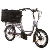 납품 화물 자전거를 위한 20 인치 화물 전기 자전거는 주문을 받아서 만들어진 Jb-Tdn03z일 수 있다