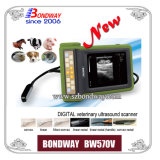 Ветеринарное Ecography - для Imaging Horse, Cow, Sheep, Goat, Pig, Bw570V