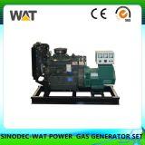 Gruppo elettrogeno piccolo stabilito di generazione elettrico del gas naturale di potere