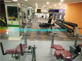 Gym for 強いつけられていた足カール機械(XH908)