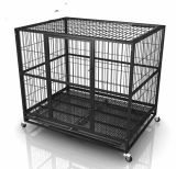 Dog Crate를 위한 Foldable Metal Mesh Folding Pet Cage