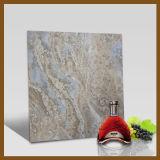 無作法な艶をかけられた陶磁器の磁器の床の壁のタイル