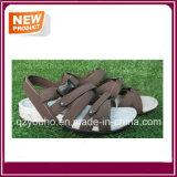 La sandalia del color de Brown calza al por mayor