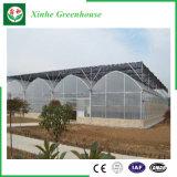 制御システムが付いているQingzhouの単一スパンのプラスチック温室