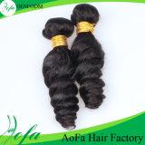 Prolonge populaire de cheveux humains de beauté du Nigéria avec les enroulements plein d'entrain
