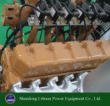 Precio aprobado del conjunto de generador del gas del biogás 20kw del Ce