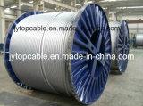 AluminiumAlloy AAAC Conductor Cable zu ASTM B399