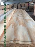 Radiata natural Pine Veneers para Plywood Face/Back Without Knot Veneers