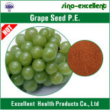 OPC natural del extracto el 90% de Seed&Skin de la uva
