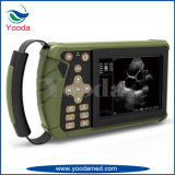 Machine médicale portative vétérinaire d'ultrason