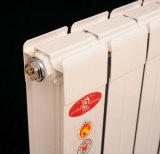 Комната с самомоднейшим умирает радиатор литого алюминия