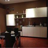 Bck白いMDF Golssのペンキの食器棚(N15-1)