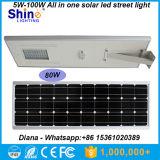 Prix usine 5W 8W 12W 15W 20W 25W 30W 40W 50W 60W 70W 80W 100W tout dans un réverbère solaire, réverbère solaire Integrated
