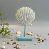 Chapa nova da parede do Seashell do vintage em Polyresin