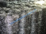 Cerca galvanizada eléctrica del acoplamiento de alambre de púas