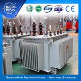 Capacidade 315kVA, transformador Oil-Immersed da distribuição da liga 10kv amorfa trifásica
