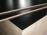 la película negra de 1250X2500X20m m hizo frente a la madera contrachapada marina para la construcción
