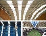 Matériau de toiture renforcé par fibre de verre porteuse d'UPVC pour la serre chaude