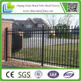 Galvanizado y Powder Coated Steel Fence