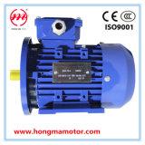 2hma de hoge Efficiënte AC Elektrische Asynchrone Motor van de Inductie