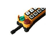 Controle de met meerdere kanalen van Radio Remote van de Kraan (F21-18D)