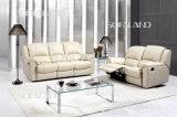 Живущий мебель комнаты (575)