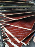 Madera contrachapada Shuttering hecha frente película roja con la insignia para la construcción