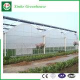 Serre van de Plastic Film van de fabrikant de Landbouw voor Groenten/Fruit