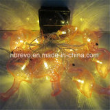 10LED 태양 강화된 홍학 끈 빛 (RS1024A)