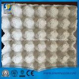 Cadena de producción del cartón del huevo máquina de moldear de la placa del huevo