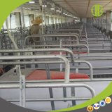 Producción caliente de la venta 2017 para el embalaje de parto de la granja de cerdo