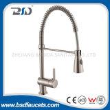 Le robinet balayé moderne de cuisine de nickel retirent les robinets simples de traitement
