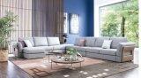 Jeu sectionnel moderne de sofa de tissu de vente de Hote grand