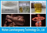 근육 성장을%s 테스토스테론 Enanthate 주사 가능한 250mg/Ml Primoteston 저장소
