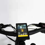 우리의 자신을%s 가진 Btn 새로운 전기 산 Ebike 디자인 크랭크