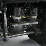 De nieuwe Vrachtwagen van de Stortplaats van de Vrachtwagen van de Kipper van het Wiel 290HP van Shacman D'long F3000 6X4 10 voor Verkoop