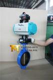 De pneumatische Actuator Vleugelklep van de Controle (D671X-10/16)