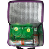 Sacchetto del dispositivo di raffreddamento dell'organizzatore del sacchetto di Tote di picnic (YYCB035)