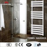 De Witte Badkamers die van Avonflow de Sanitaire Plank van de Handdoek van Waren (af-voet) past