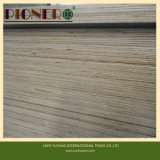 M. Glue Brown Construction Film zag Triplex onder ogen