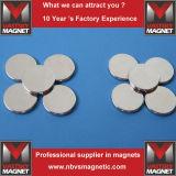 Bestes N52 25mm x 5mm starkes rundes Platten-Magnet-seltene Massen-Neodym
