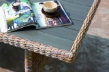 Outdoor Patio Rattan Móveis Jardim Vime, Kd Dynasty-Benno Lounge Set Outdoor Furniture (J563-KD)