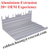 Aluminiumstrangpresßling für Buliding Material mit 20 Jahren Export-Erfahrungs-