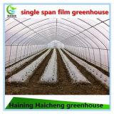 토마토 설치를 위한 싼 농업 온실
